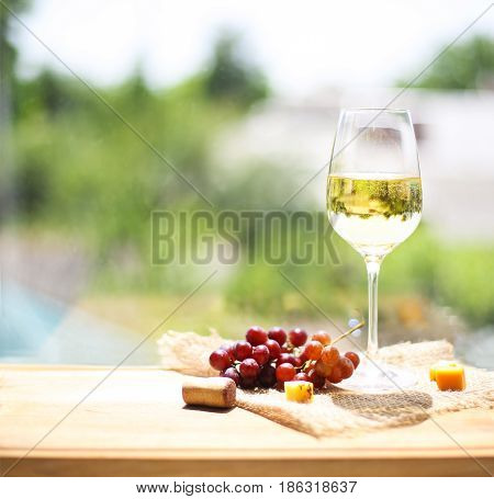 Grape cheese with a glass of white wine on green blurred garden background