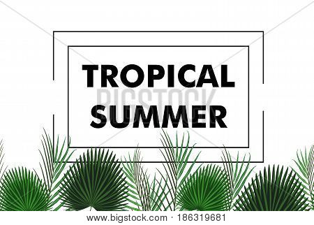 Seamless border with green tropical exotic banana palm leaves on style background and logo note tropical summer. Vector illustration stock vector.