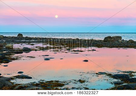 Endless polar day in the Arctic. On the shore of the White sea during low tide. Dramatic sky with clouds at night. Breathtaking pink color of a summer night in the Arctic