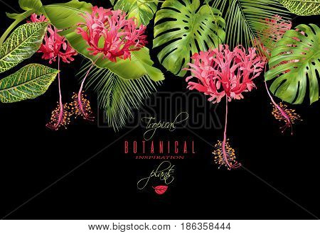 Vector botanical horizontal banner with tropical leaves and red exotic flowers on black background. Design for cosmetics, spa, health care products, travel company. Can be used as summer background