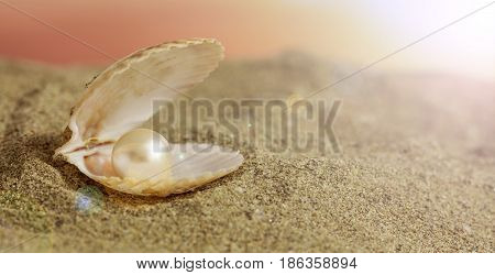 Pearl In A Seashell On The Beach