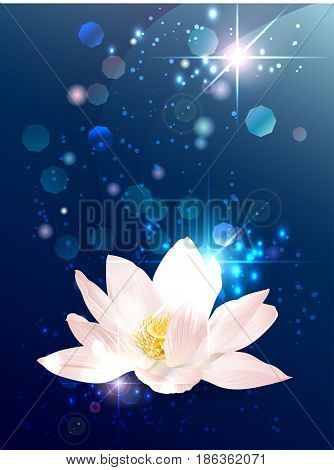 Vector lotus esoteric banner on blue space background with stars and lights. Mystical design for astrology, occultism, yoga, ayurvedic medicine. Providens symbol with place for text
