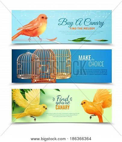 Set of horizontal banners with choice of canary with melody and type of birdcages isolated vector illustration