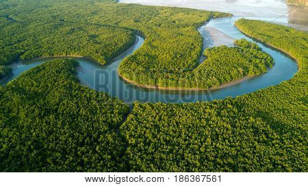 Aerial mangrove forest view in the Phang Nga bay, Thailand
