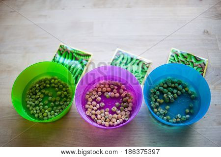 Different kinds of peas on plate. Preparation seeds