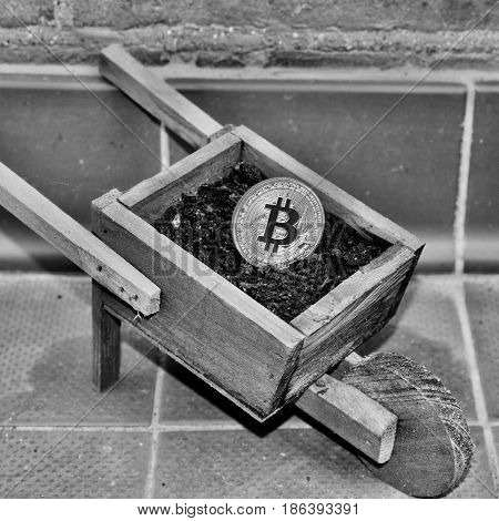 Bitcoin On The Trolley