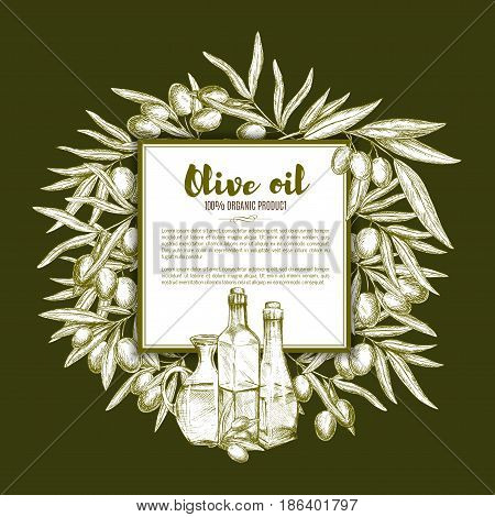 Olive oil and fruit sketch poster. Olive tree branches with ripe fruit and bottles of natural organic oil arranged around text layout. Olive oil label, healthy food banner design