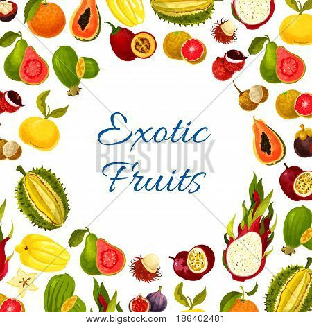Exotic fruits vector poster of carambola and passionfruit, tropical mango or papaya and orange grapefruit harvest. Juicy dragon fruit, guava or avocado figs and rambutan, feijoa and mangosteen