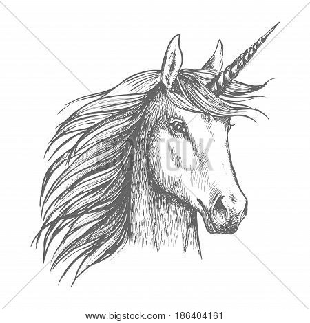 Unicorn horse animal vector sketch. White mythical heraldic isolated horse head with long horn. Mythic symbol of fantasy horse for fairytale story or fantasy design