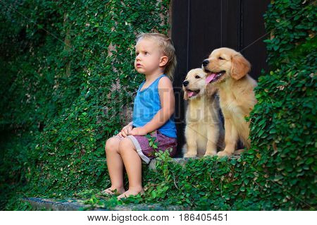 Funny photo of happy baby boy sitting with two golden labrador retriever puppies play together. Family lifestyle training dog. Positive emotions of children fun game with home pet on summer vacation