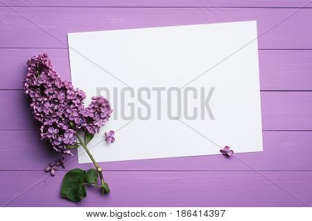 Lilac background for text. Branch of lilac flowers on a wooden board. Blank white sheet of paper for messages