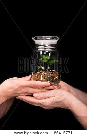 Close-up partial view of senior couple standing and holding coins and plant in jar