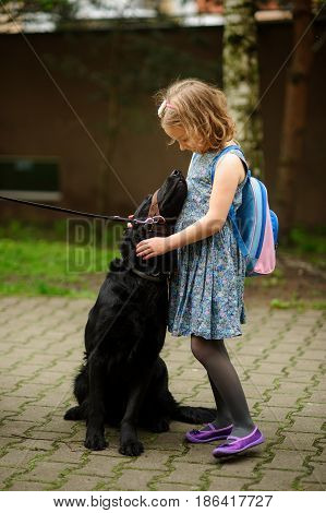 Little schoolgirl caressing a big black dog sitting on a leash. Dog trustfully nestles on the child.