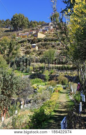 Inca track and garden at Isla del Sol at the entrance of Yumani village