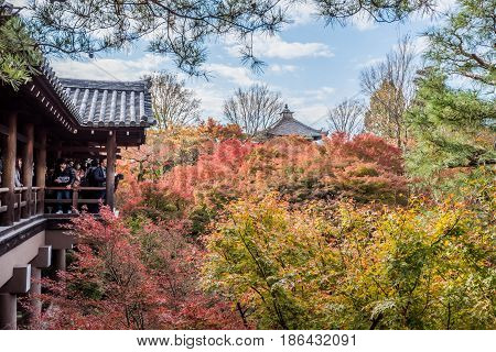 Kyoto Japan- November 282015 : Unidentified tourists visit Tofukuji Temple to celebrate the autumn maple leave festival in Kyoto Japan.