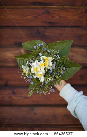 Close up of woman's hand holding garden flowers. Beautiful spring bouquet of narcissus forget me not and fresh leaves on the dark wooden background. Summer bunch of nice flowers. Floristry