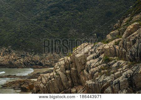 Evergreen forest beyond mountain stone creek near sea beach