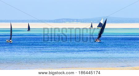 Mozambique scenic coast with traditional boats and low tide
