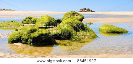 Rocks covered with moss at beach in Spain
