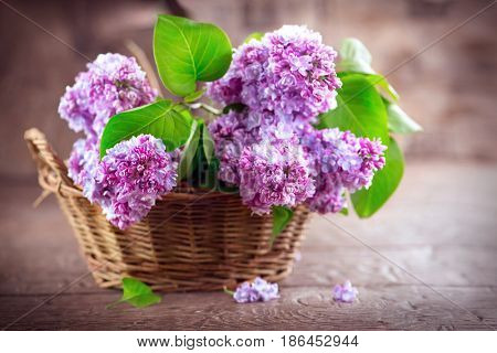 Lilac flowers bunch in a basket over blurred wood background. Beautiful violet Lilac flower still life Easter border design on wooden table. Beauty fragrant Lilac Flowers bouquet with Copy space