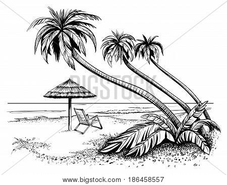 Ocean or sea beach with palms sketch. Black and white vector illustration of island shore with umbrella and chaise longue. Hand drawn seaside view.