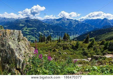High mountains view with green meadow and stones in the foreground. Zillertal High Alpine Road Austria Tirol Zillertal