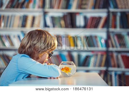 Little boy with goldfish indoors