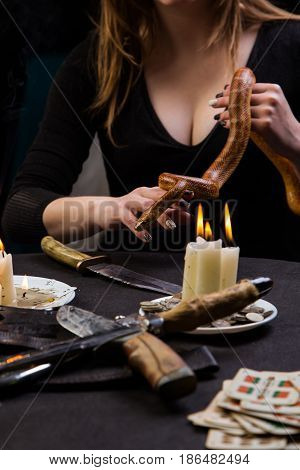 Snake Leaned Into The Witch's Hand Over The Knife