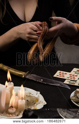 Foreteller Performs A Ritual For Money I Use Magic Snake