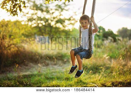 Cute Child, Boy, Having Fun On A Swing In The Backyard