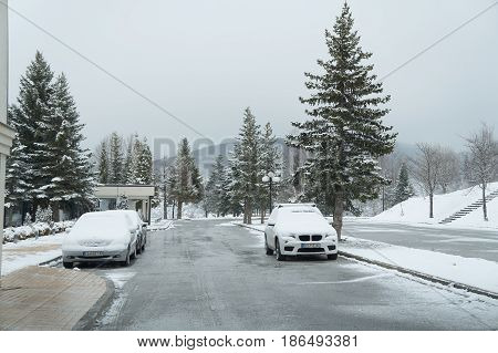 MAVROVO, MACEDONIA - MARCH 11, 2017: Winter near Mavrovo lake in Macedonian republic, fir trees