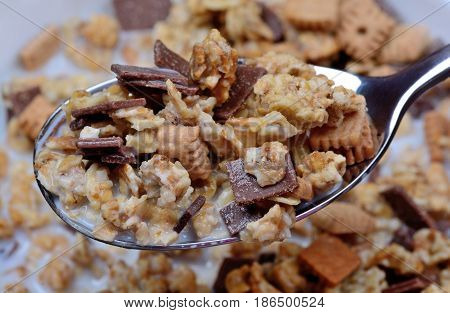 Muesli with milk in a spoon and bowl close-up