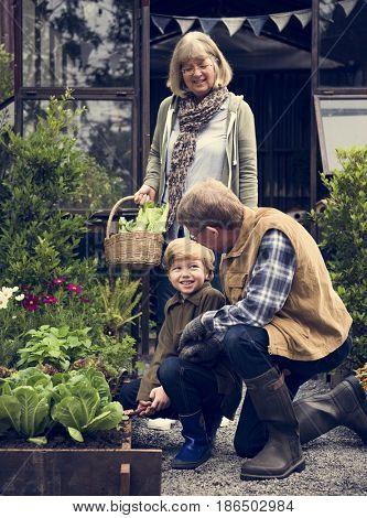 Grandparents and Grandson Pick Up Fresh Vegetable Together