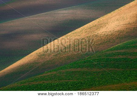 Field abstraction. Colorful plowed field with geometric lines.Agricultural landscape.Multicolored cultivated field, with plantings of different colors. Colorful plowed field with geometric intersecting lines. Europe, South Moravian, Czech Republic