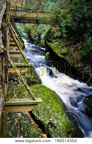 A nature stairway with a rapid river and trees.