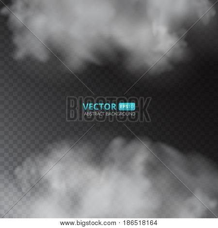 Grey color fog or smoke isolated on transparent background. Vector illustration for your design.
