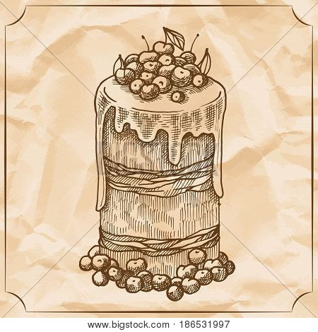 Sweet retro cake with fruit and berries. Treat for the birthday. Vector hand drawn illustration. T-shirt printing.