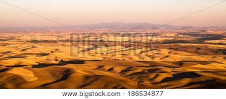 Early morning light hits the farms and fields of the Palouse in Washington State