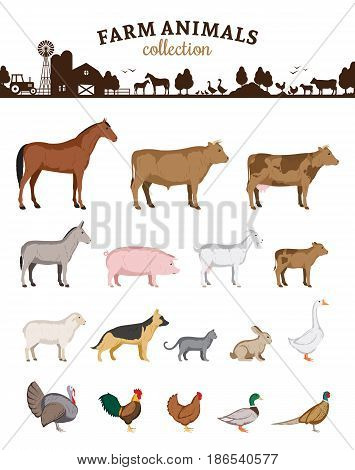 Vector Farm Animals Cartoons