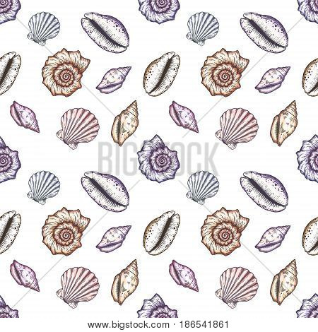Hand drawn marine background. Seamless pattern with seashells and anchors.
