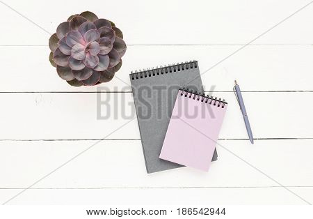 Business workspace with grey notebook succulent pen on white wooden background. Flat lay top view.