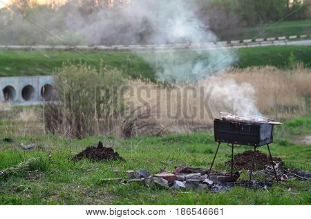 Shish Kebabs From Chicken Wings Are Fried In The Field. A Classic Barbecue In The Open Air. The Proc