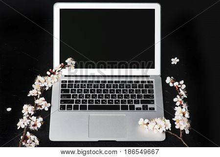 Laptop and spring flowers on dark background