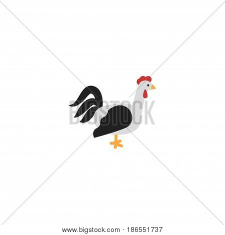 Flat Cock Element. Vector Illustration Of Flat Rooster Isolated On Clean Background. Can Be Used As Cock, Rooster And Bird Symbols.