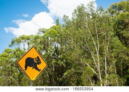 Koala bear warning sign black on yellow near country road in Australia.