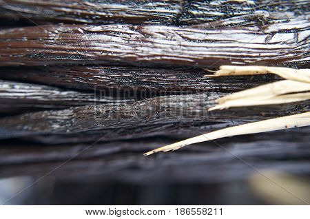 Close up macro image of bunches of vanilla pods. The small individual seeds can be seen in this aromatic super flavour plant.