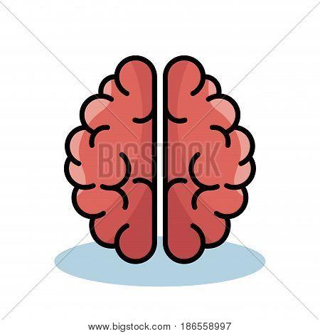 Pink brain over white background. Vector illustration.