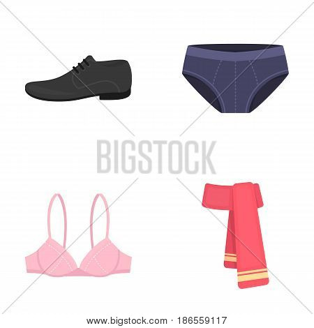 Male shoes, bra, panties, scarf, leather. Clothing set collection icons in cartoon style vector symbol stock illustration .