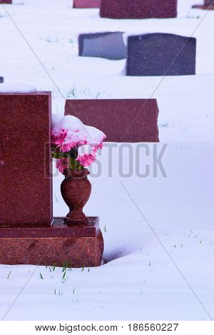 pot of flowers next to a historic grave headstone taken in a cemetery surrounded with snow