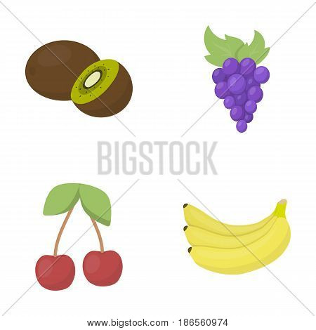 Kiwi, grapes, cherry, banana.Fruits set collection icons in cartoon style vector symbol stock illustration .